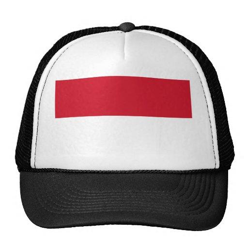 Identificación de Indonesia, Jakarta, bandera Gorros Bordados