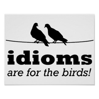 Idioms Are For The Birds Funny Poster Sign Grammar