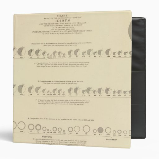 Idiots, Statistical US Lithograph 1870 Binders