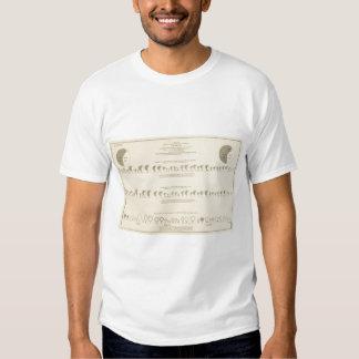 Idiots, Statistical US Lithograph 1870 Tee Shirt