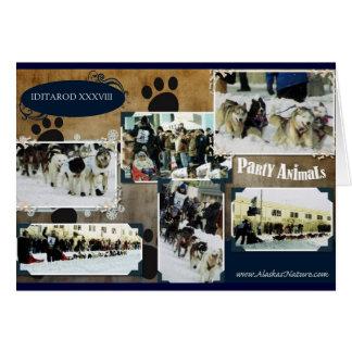 Iditarod 2010 greeting card