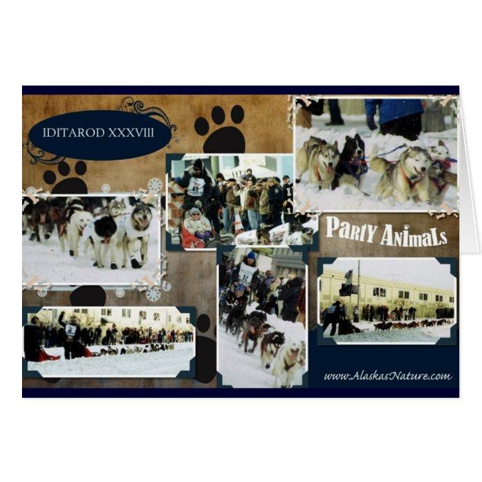Iditarod 2010 card