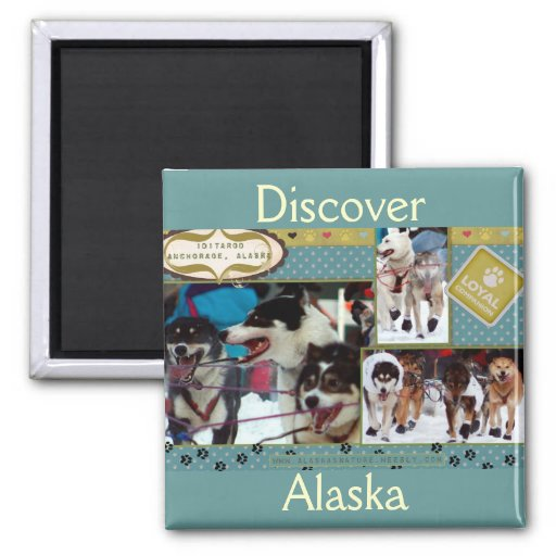 Iditarod Loyal Companions 2 Inch Square Magnet