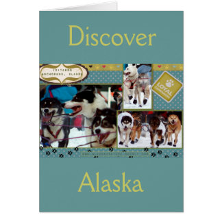 Iditarod Loyal Companions Card