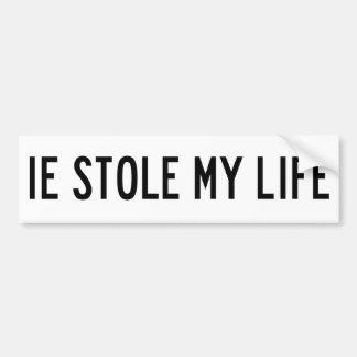 IE Stole My Bumper Sticker Car Bumper Sticker