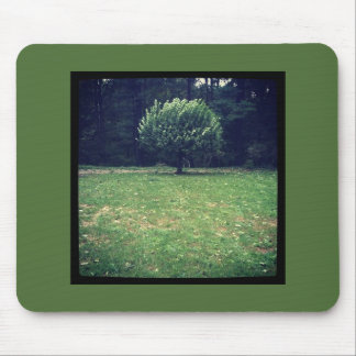 If a Tree Grows in the Forest Mouse Pad