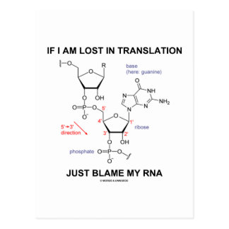 If I Am Lost In Translation Just Blame My RNA Postcard