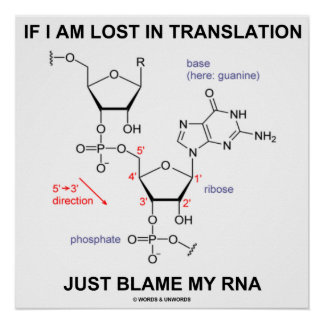 If I Am Lost In Translation Just Blame My RNA Poster