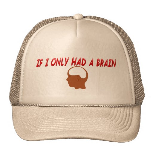 If I Only Had A Brain  Hat