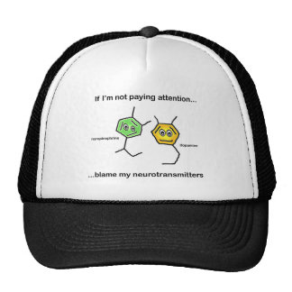 If I'm not paying attention... Mesh Hats