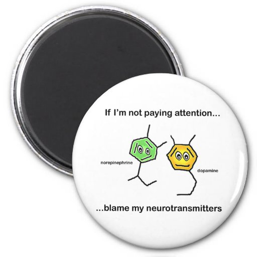 If I'm not paying attention... Refrigerator Magnet