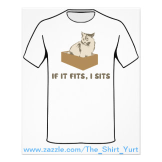 If It Fits, I Sits Cat Flyer
