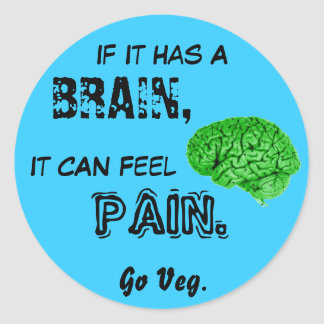 If It Has a Brain, It Can Feel Pain. Go Veg Classic Round Sticker