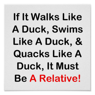 If It Walks Like A Duck, It Must Be  A Relative! Poster