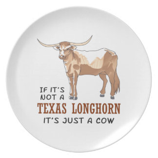 IF ITS NOT A LONGHORN PARTY PLATES