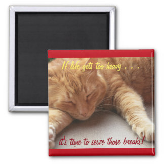 If life gets too heavy Inspirational Magnet cat 2b