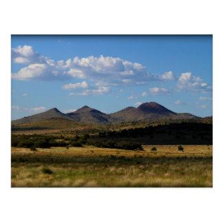 If Only One Shot - Prescott Valley, AZ Postcard