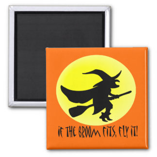 If the broom fits, fly it! magnet