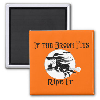If the Broom Fits Magnets