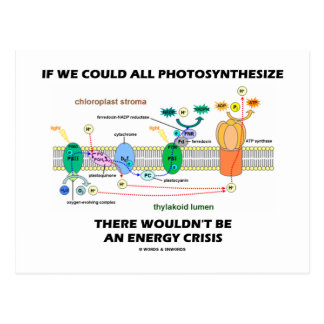 If We Could All Photosynthesize Wouldn't Be Energy Postcard