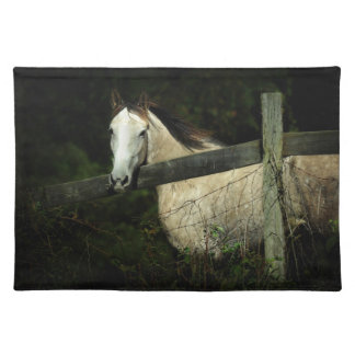 If Wishes Were Horses Placemats