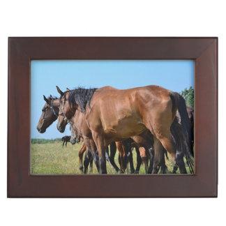 If Wishes Were Horses Poetry Keepsake Box