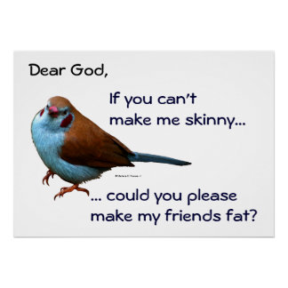 """""""If you can't make me skinny, make my friends fat"""" Poster"""