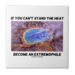 If You Can't Stand The Heat Become An Extremophile Tile