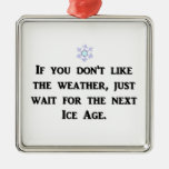 if-you-dont-like-the-weather-just-wait-for-the christmas ornament