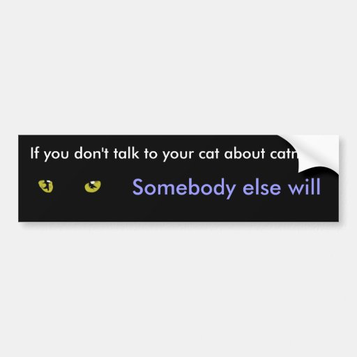 If you don't talk to your cats about catnip bumper sticker