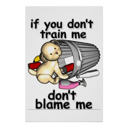 If You Dont Train Me Blame Me Poster Zazzle