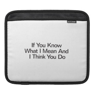If You Know What I Mean And I Think You Do iPad Sleeves