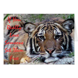 If You Love Someone... Beautiful Tiger Card