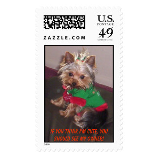 If you think I'm cute you should see my owner Postage Stamps