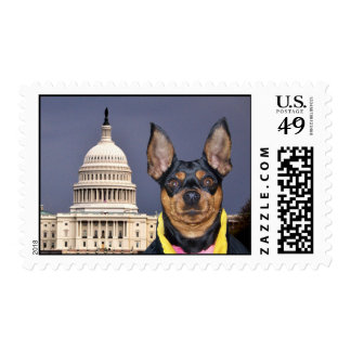 If you want a friend in Washington ... Postage Stamp