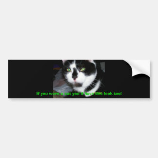 "If you were a Cat you""d have this look too! Bumper Sticker"