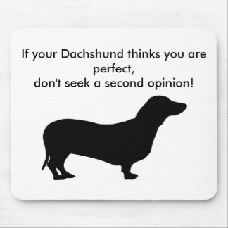 If your dachshund thinks you are perfect don't mouse pad