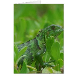 Iggy the Green Iguana Greeting Card