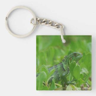Iggy the Green Iguana Single-Sided Square Acrylic Keychain