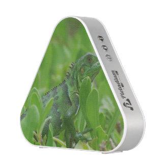 Iggy the Green Iguana Bluetooth Speaker