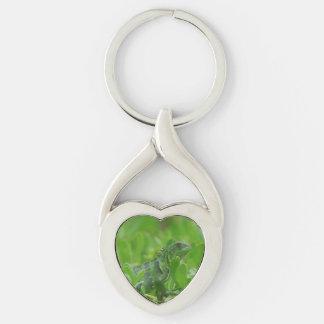Iggy the Green Iguana Silver-Colored Heart-Shaped Metal Keychain
