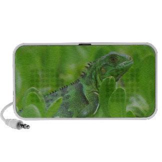 Iggy the Green Iguana Notebook Speakers