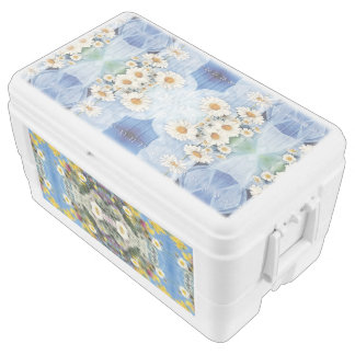 igloo 48 quart duo deco chest cooler