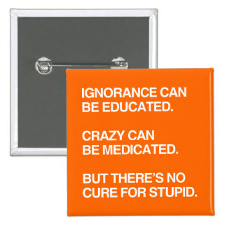 IGNORANCE CAN BE EDUCATED PINBACK BUTTON