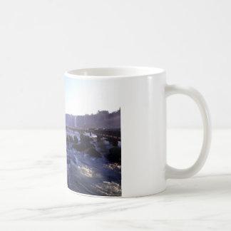 Iguacu Falls Brazil and Argentina Coffee Mug