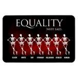 Igualdad. 'Nuff dijo Imanes Rectangulares