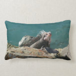 Iguana at St. Thomas Lumbar Pillow