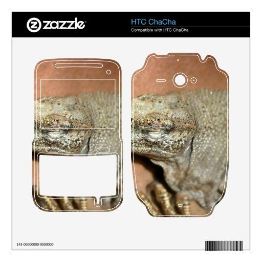 Iguana Calcomanías Para HTC ChaCha