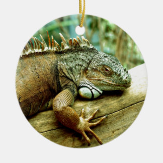 Iguana Ceramic Ornament