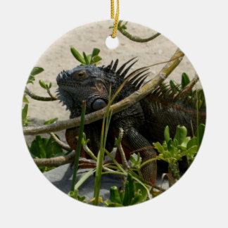 Iguana Ceramic Ornament